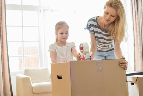 Mokena parental relocation attorney